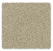 Cut Pile Twist Carpet Bailey Feltex