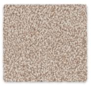 Cut Pile Twist Carpet Godfrey Hirst Wool Enchant Stipple