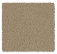 Cut Pile Plush Carpet Melville
