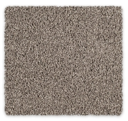 Cut Pile Twist Carpet Godfrey Hirst Wattle Bay