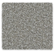 Cut Pile Twist Carpet Ambiental Twist Triexta Godfrey Hirst