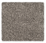 Cut Pile Twist Carpet Feltex Awana Bay