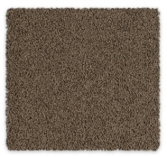 Feltex Carpet Bailey II