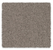 Feltex Carpets Bailey II