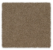 Cut Pile Twist Carpet Calluna Feltex