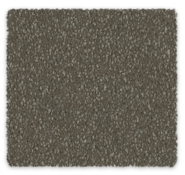 Cool Charm Carpet | Godfrey Hirst