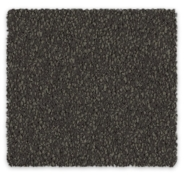 Cool Charm Carpet | Godfrey Hirst