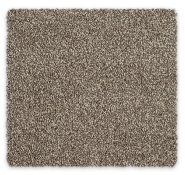Cut Pile Twist Carpet Godfrey Hirst Cornwell Twist