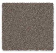 Cut Pile Twist Carpet Godfrey Hirst Elegant Reflections