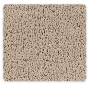 Polyester Cut Pile Twist Carpet Vermont