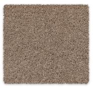 Cut Pile Twist Carpet Iowa Soft Carpet Feltex