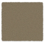 Cut Pile Plush Carpet Melville