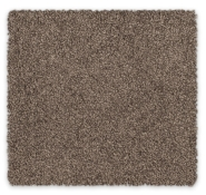Cut Pile Twist Carpet Feltex Misty River