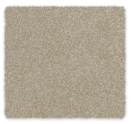 Cut Pile Twist Carpet Feltex Rockvale