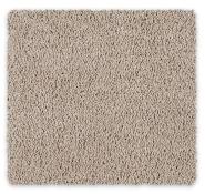 Cut Pile Twist Carpet Godfrey Hirst Royal Oak Twist