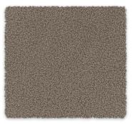 SDN Carpet Ruby Bay Feltex Carpet