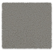 Cut Pile Twist Carpet Scarborough Feltex