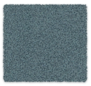 Cut Pile Twist 100% Triexta Godfrey Hirst Carpet Soft Embrace
