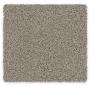 Cut Pile Twist 100% Triexta Godfrey Hirst Carpet Soft Embrace
