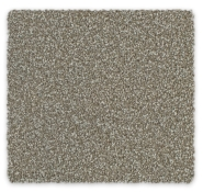 Cut Pile Twist Triexta Carpet Feltexgreen Carpet