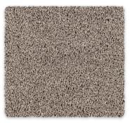 Polyester Cut Pile Twist Carpet Vermont