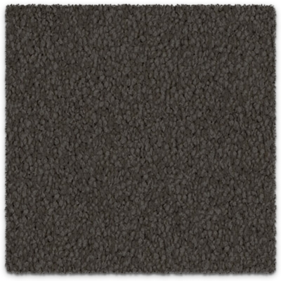 Soft Carpet Cut Pile Twist Cool Charm Godfrey Hirst