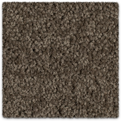 Cut Pile Twist Wool Carpet Godfrey Hirst Grand Luxury