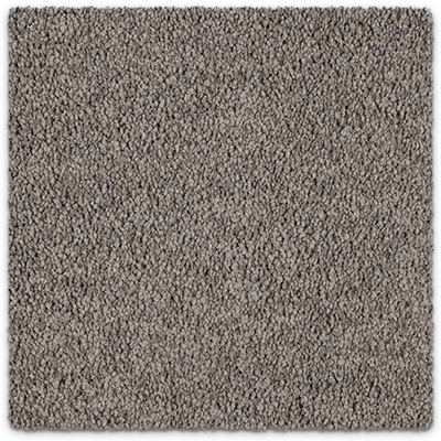 Cut Pile Twist Carpet Godfrey Hirst Royal Oak Twist